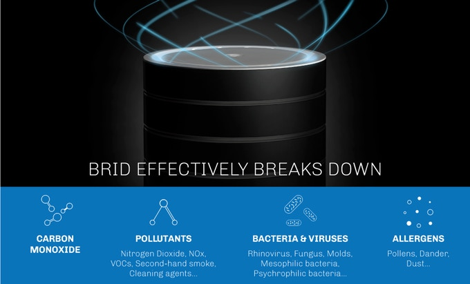 BRID the 'Forever' NanoTechnology Air Purifier | Indiegogo
