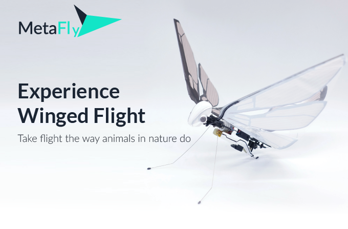MetaFly - A New Flying Experience    Indiegogo